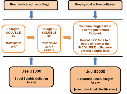 Chart to determine which Sircol™ Collagen Assay is best for your application.