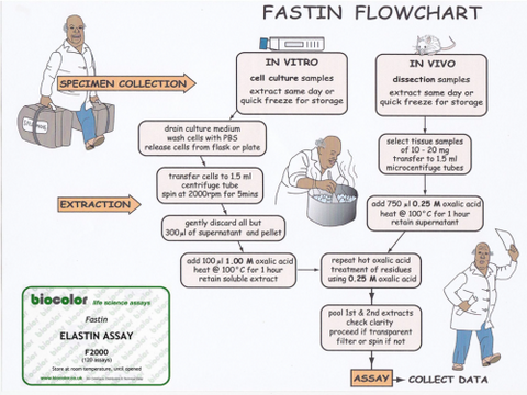 Fastin Elastin Assay flow chart to determine the protocol for your specific application.