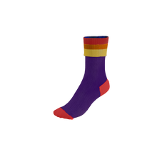 Load image into Gallery viewer, Pook Super Socks - Rainbow