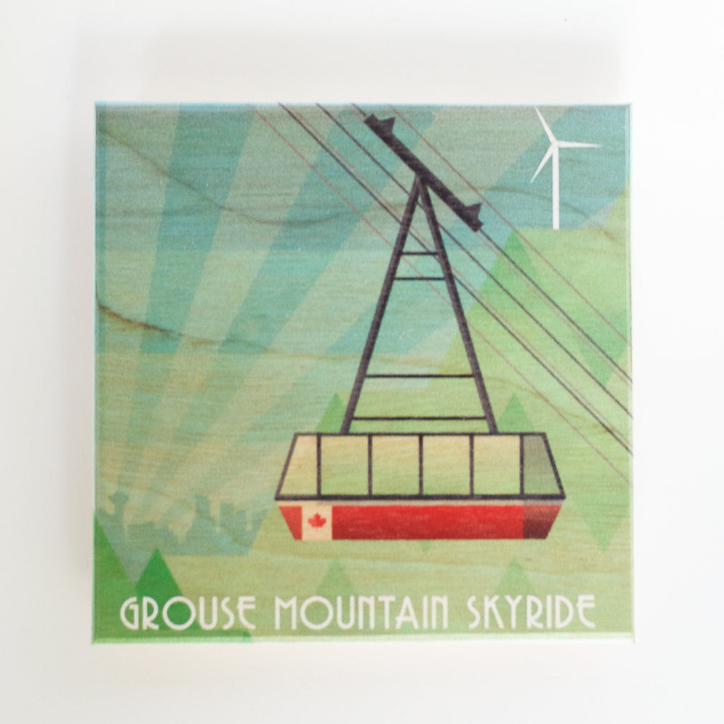Clearance: Skyride (various sizes)