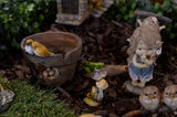 Miniature Fairy Gardens are a Touch of Magic!