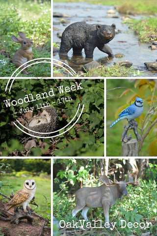 woodland week July 11th - 17th