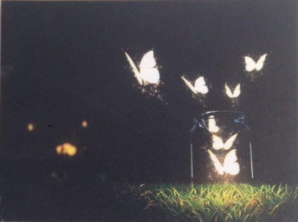 Butterflies On Canvas - Illuminated Painting