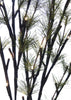 Pine Needles LED Branch 31.5""