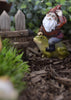Fairy Garden Gnome Travels on a Frog