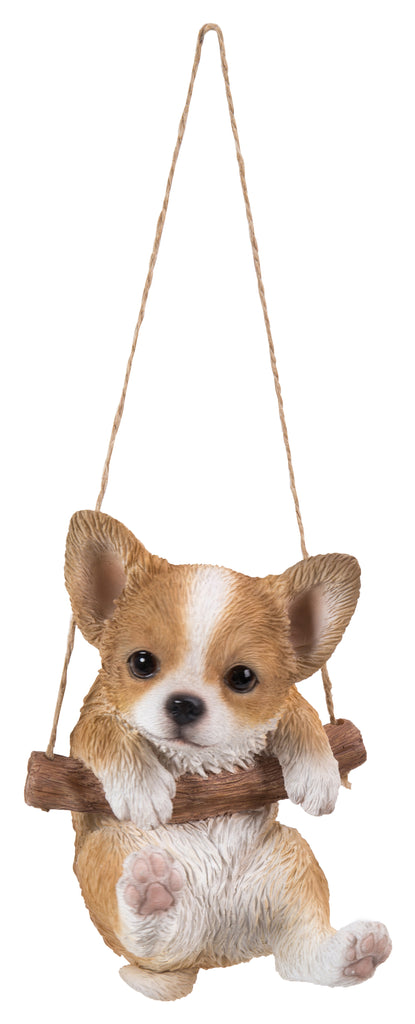 Hanging Chihuahua Puppy