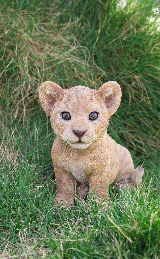Pet Pals - Lion Cub Sitting