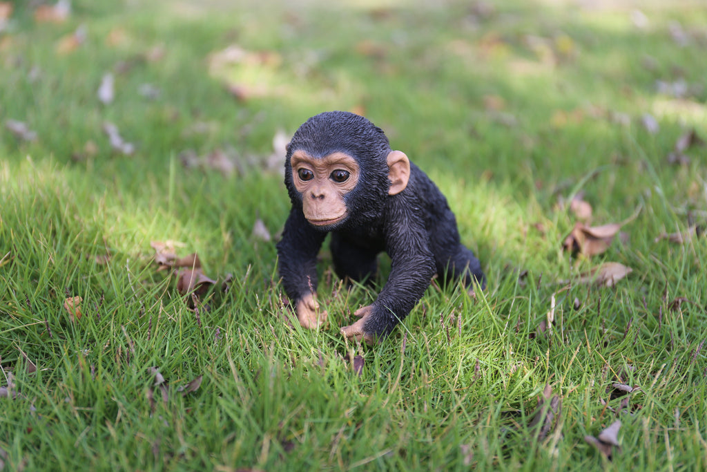 Pet Pals - Chimpanzee Baby Running