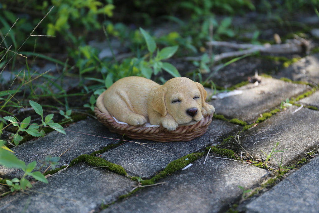 Pet Pals - Wicker Basket-Golden Lab