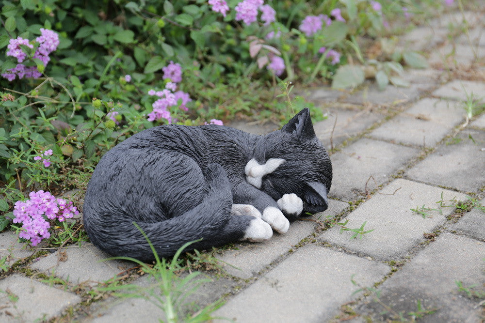 Lying Cat Sleeping  Black and White Statue