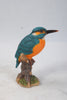Kingfisher On Stump