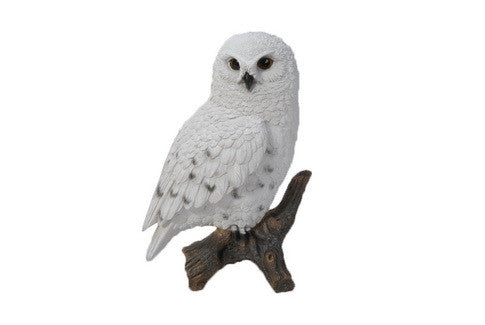 Snowy Owl On Stump - Small
