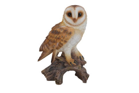 Barn Owl On Stump - Small