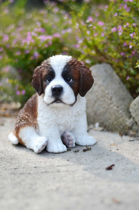 Sitting Saint Bernard Puppy