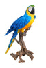 Macaw Blue and Yellow - Large