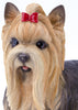 Yorkshire Terrier Dog Garden Statue