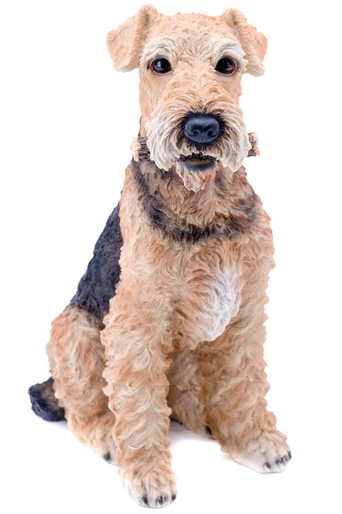 Buy Airedale Terrier Dog Garden Statue Sitting for Sale Online in