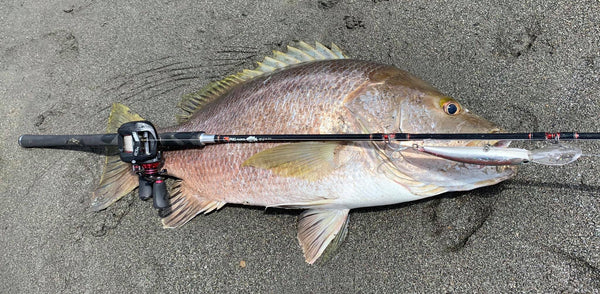 PNG Raskol Rods with Giant Snapper