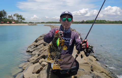 Storm Discovery Rod with Shad Dancer - SGfishingRigz