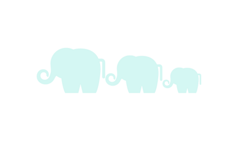 Elephant family holding tails in a line - TWD Website Divider