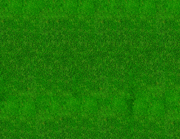 Medium Green Grass Model Train Scenery Sheet