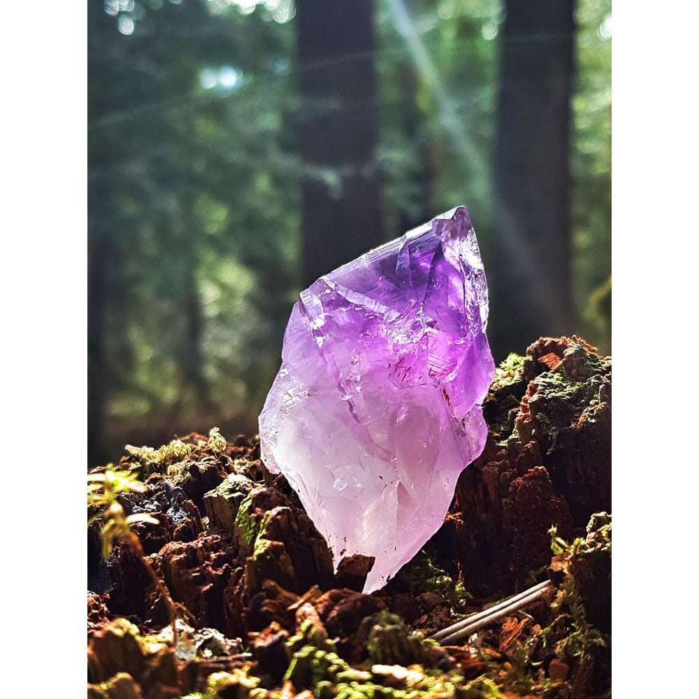 Amethyst Crystal Points Rough Natural Crystal / MULTIPLE SIZES / Aid Meditation - Natural Crystals