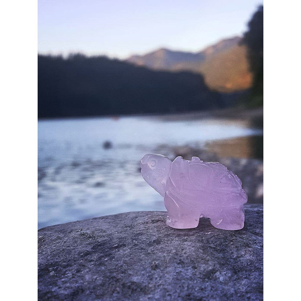 Rose Quartz Turtle Animal Totems Animal Totem Fertility Crystal Genuine Gemstone Gemstone Turtle