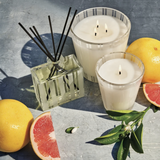 Nest New York Classic | Grapefruit | Candles | $46