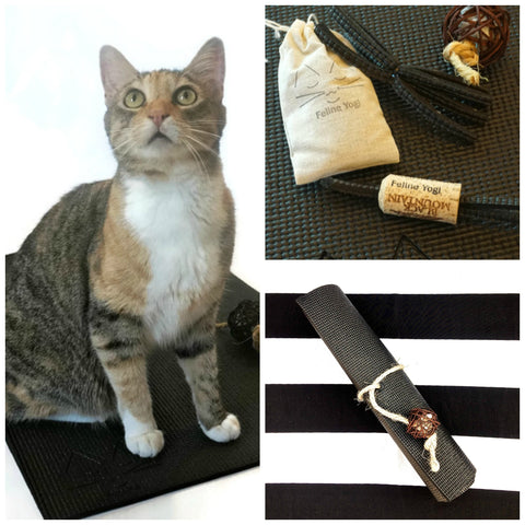 Feline Yogi Yoga Cat Mat Gift Set-Black