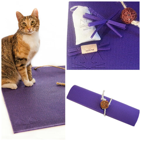 Feline Yogi Yoga Cat Mat Gift Set-Purple