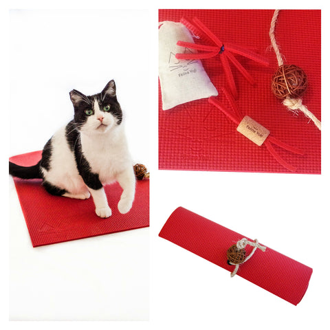 Feline Yogi Yoga Cat Mat Gift Set-Red