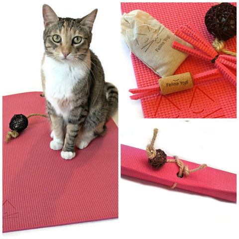 Feline Yogi Yoga Cat Mat Gift Set-Pink