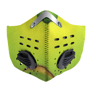 Grinch Mask Carbon PM 2,5 Face Mask