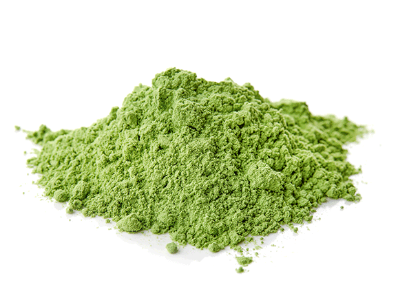 Chlorella Grass from Germany - YourSuperFoods Ingredient