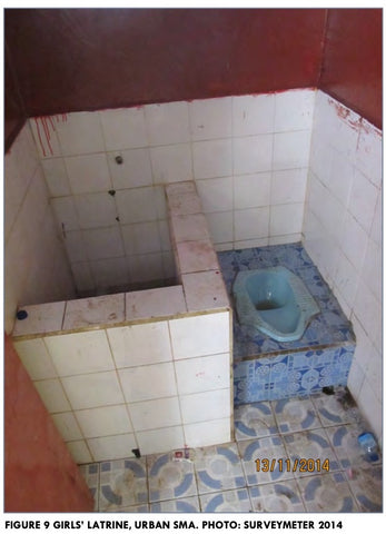 Toilet restroom in rural indonesian school period poverty unhygienic