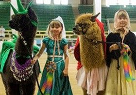 two girls with two alpacas in costumes