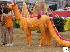 llama and alpaca competition dressed up as an orange dragon