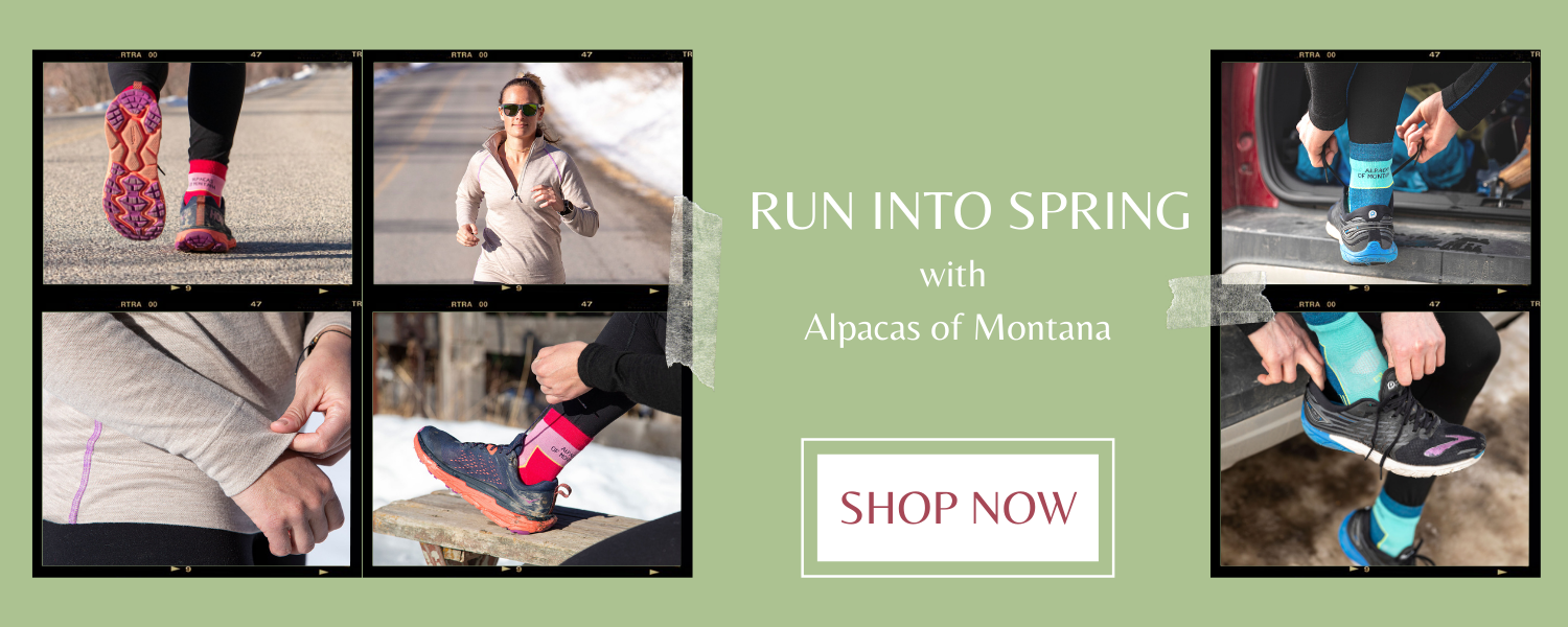 run into spring with Alpacas of Montana running socks!