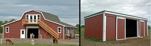 Alpaca barns and fences for taxes when starting an alpaca farm