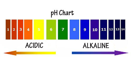 ph chart showing acidity and alkaline