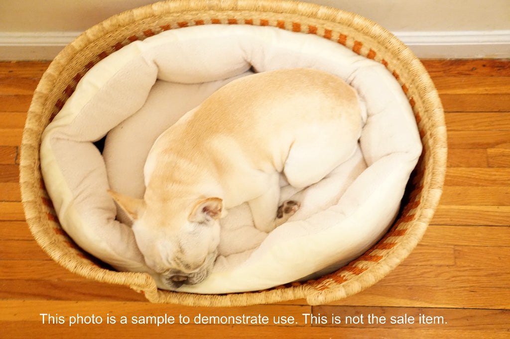 "Design Dua Bear Dog Bed ""Mole"""