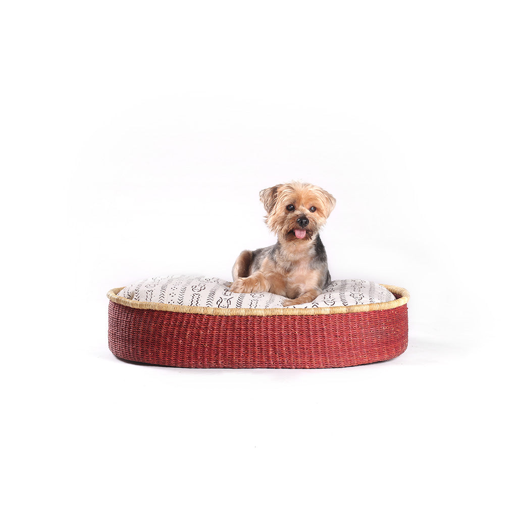 "Imperfect ""Brothers"" Dog Bed"