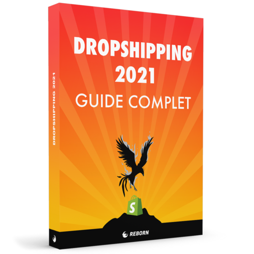 Guide Dropshipping 2021