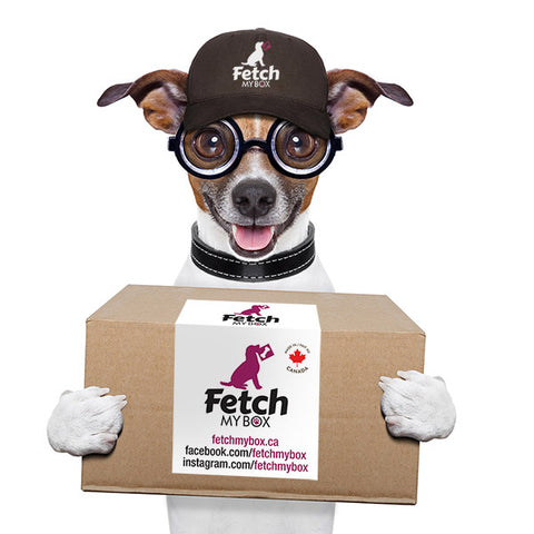 Fetch My Box subscription box for your dog