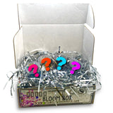 Glitter Bloom Box - Prepay 6 Months