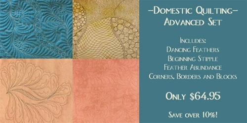Advanced Domestic Free Motion Quilting Set