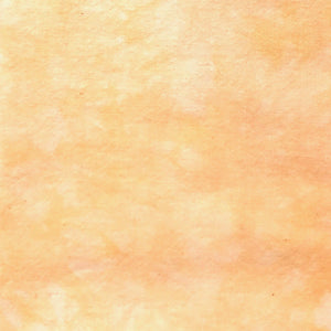Orange Crush - Textured Hand Dyed Fabric Bundle