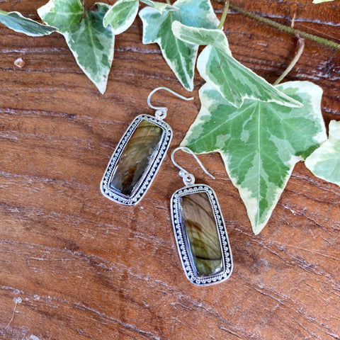 Labradorite Long Spectro Earrings