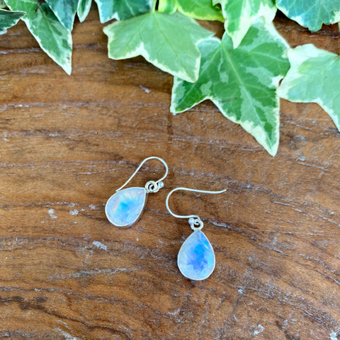 Rainbow Moonstone Grace Teardrop Earrings