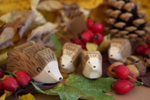 Ostheimer hedgehogs amidst leaves, rosehips, and pinecones.